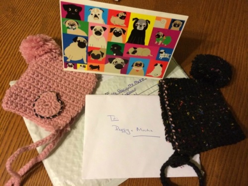 Pink and a grey handmade crocheted touques for pugs with a Rainbow Pugs card